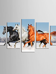 Canvas Set Famous Animal Classic Traditional,Five Panels Canvas Any Shape Print Wall Decor For Home Decoration