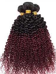 Tejidos Humanos Cabello Cabello Hindú Recto 3 Piezas los tejidos de pelo