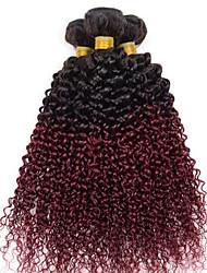 Menschenhaar spinnt Indisches Haar Gerade 3 Stück Haar webt