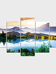 Stretched Canvas Print Landscape Floral/Botanical Style Pastoral,Five Panels Canvas Any Shape Print Wall Decor For Home Decoration