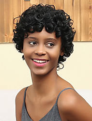 New Pattern Short Volume Prevailing Fashionable African Roll  Human Hair Wig