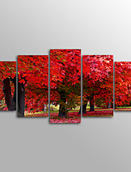 Canvas Print Landscape Five Panels Red Tree Canvas Horizontal Print Wall Decor For Home Decoration