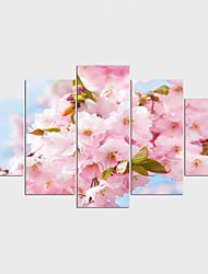 Landscape Floral/Botanical Style Modern,Five Panels Canvas Any Shape Print Wall Decor For Home Decoration
