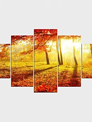 Stretched Canvas Print Floral/Botanical Style Modern,Five Panels Canvas Any Shape Print Wall Decor For Home Decoration