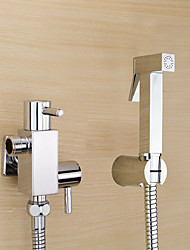 Contemporary  with  Chrome Two Handles One Hole    Feature  for Wall Mount Pull out