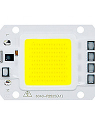 High Power LED COB Chip 30W 110V 220V Input Smart IC For DIY LED Flood Light Chip (1 Piece)