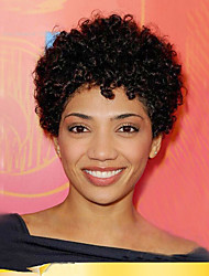 Fashionable Prevailing Short Curly Hair Synthetic Wig