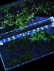 Acquari Illuminazione LED Bianco Blu Con interruttori Lampada LED 220V
