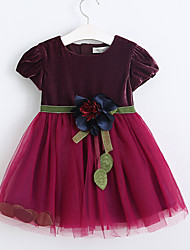 Girl's Casual/Daily Solid Dress Fall Short Sleeve