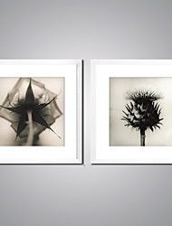 Canvas Prints Black and White Flowers Picture Print on Canvas with White Frame Contemporary Artwork for Wall Decor Ready to Hang