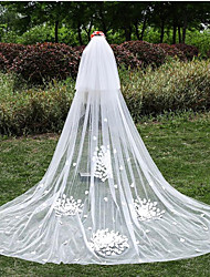 The New Flowers 3 Meters Long Veil Bride Bride Wedding Veil White Lace Veil