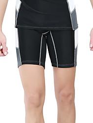 Sportif Homme Short de Combinaison Séchage rapide Néoprène Tenue de plongée Cuissard  / Short-Plongée Eté Mode