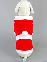Собака Свитера Одежда для собак На каждый день Мода Носки детские Красный