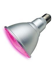 15W E26/E27 LED Aufzuchtlampen PAR30 5 SMD 1200 lm Lila Wasserdicht V 1 Stück