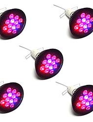 36W Luci LED per la coltivazione PAR38 12 LED ad alta intesità 1920 lm Rosso Blu V 5 pezzi