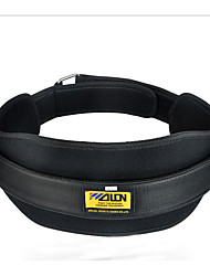 Dipping Belt/Weight Dip Belt Boxing