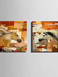 E-HOME Stretched Canvas Art Abstract Horse  Decoration Painting One Pcs