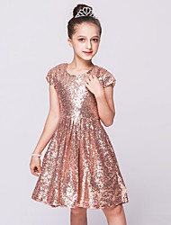 A-line Knee-length Flower Girl Dress - Sequined Jewel with Sequins Girls pageant Party dresses