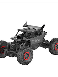 9118 Passeggino 1:18 Auto RC 2.4G Pronto all'uso 1 manuale x 1 x Batteria 1 x RC Car