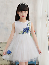 Girl's Embroidered Dress,Cotton Acrylic Summer Sleeveless
