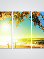 Canvas Print Sunny Beach Print Art for Wall Decoration Ready to Hang 30x60cmx3pcs