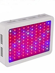 200W All-Optical LED Growing Lamps for Hydroponics and Flowering Plants Red  Blue  UV  Infrared EU / US 100 High Power Lamp Beads Voltage AC85  265V