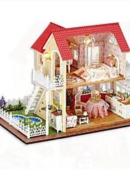 Music Box House Plastics Wooden