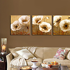 Feszített Canvas Art Floral Popies 3 darabos