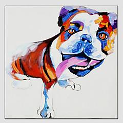 Handgeschilderde DierenModern / Europese Stijl Eén paneel Canvas Hang-geschilderd olieverfschilderij For Huisdecoratie