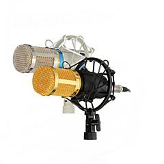 ダイナミックレコードbm800を記録するプロフェッショナルコンデンサーマイクマイクスタジオサウンド