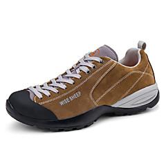 Baskets Chaussures de Randonnée Chaussures de montagne UnisexeAntidérapant Anti-Shake Coussin Ventilation Impact Séchage rapide