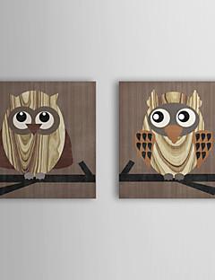 Reproduction transférée sur toile Art Animalier Owl par Erin Clark Lot de 2