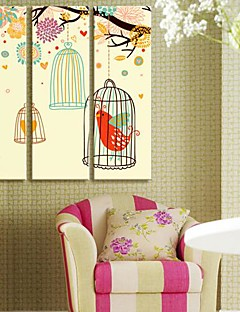 Toiles art animal Like A Bird Singing Ensemble de 3