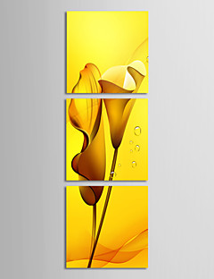 Op gespannen doek kunst Bloemen Gele Lelies Set van 3