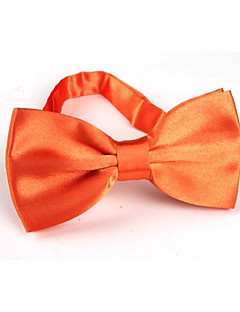 Unisex Vintage/Party/Work/Casual Bow Tie , Polyester