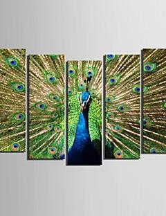 е-Home® натянутым холстом искусство павлин-декоративной живописи набор из 5