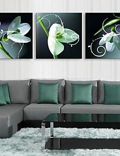 e-HOME estiró la impresión del arte de la lona llevado flor verde efecto de flash destella llevada de juego de copias de fibra óptica de 3