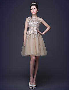 Cocktail Party Dress - Champagne Plus Sizes / Petite A-line / Princess Scoop Knee-length Lace / Tulle