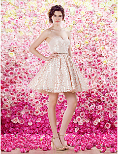 thuiskomst ts couture cocktail party dress - a-lijn geliefde korte / mini taft