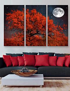 e-Home® opgespannen doek zijt de rode boom decoratie schilderij set van 3