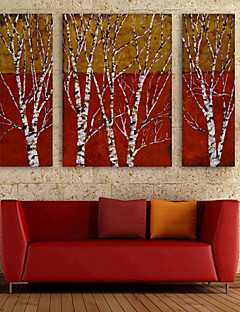 E-HOME® Stretched Canvas Art Branch Decoration Painting  Set of 3