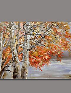 peinture à l'huile florale / botanique art mural autres artistes painting5424-1 d'huile peint à la main peint à la main