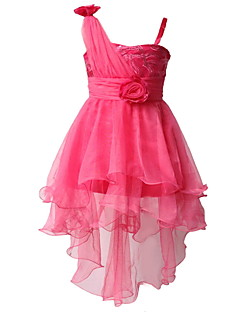 Retailed Little Girls Evening Party/ Wedding Princess Dress Pageant Dress Ball Dress For Toddler Girls SZ 3~10Y