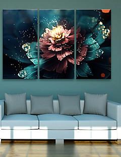 E-HOME® Stretched LED Canvas Print Art Flower LED Flashing Optical Fiber Print Set of 3