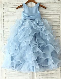 Princesse / Fourreau / Colonne Longueur Sol Robe de Demoiselle d'Honneur Fille - Organza Sans Manches Bijoux avec
