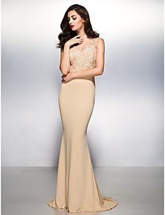 TS Couture® Formal Evening Dress - Champagne Trumpet/Mermaid V-neck Sweep/Brush Train Lace / Jersey