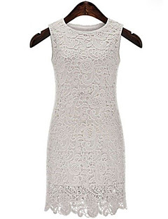 Women's Solid Dress, Bodycon, Lace