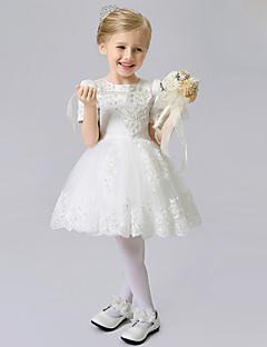 a-line krátké / mini květinové dívčí šaty - saténový tylek s krátkým rukávem šperkovým krkem se stuhou xmf