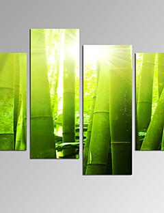 Abstrakti / Fantasy / Leisure / Landscape / Valokuvaus / Moderni / Romantiikka / Pop Art Canvas Tulosta 4 paneeli Valmis Hang,Horizontal