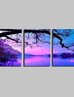 Landschap Canvas Afdrukken Drie panelen Klaar te hangen , Verticaal